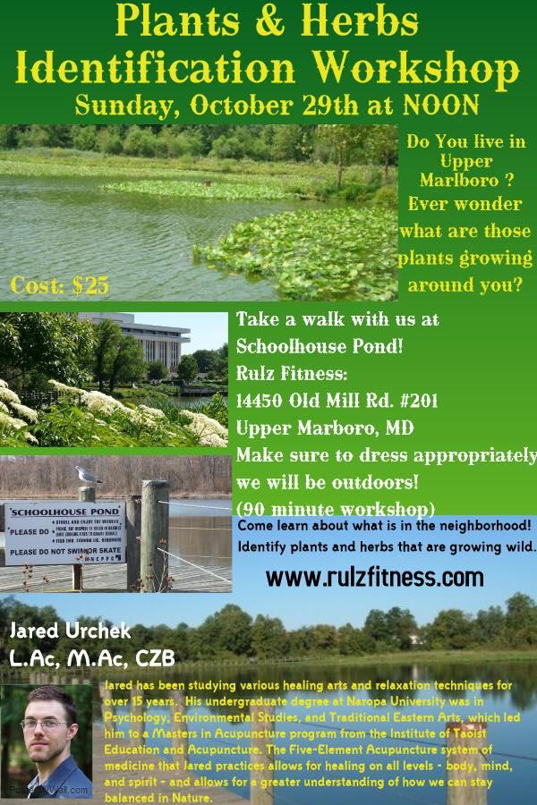 Copy of River Cabin